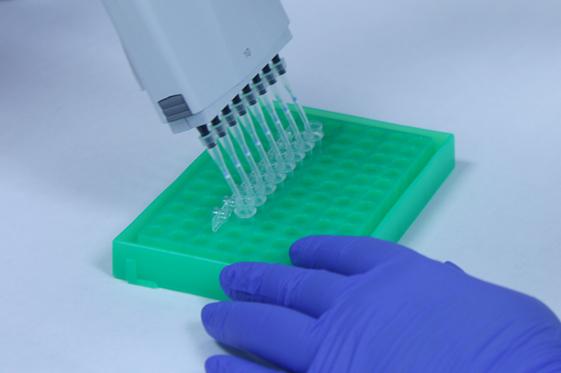 حدنصاب و تراز قبولی دعوت به مصاحبه آزمون دکتری ژنتیک مولکولی دانشگاه آزاد
