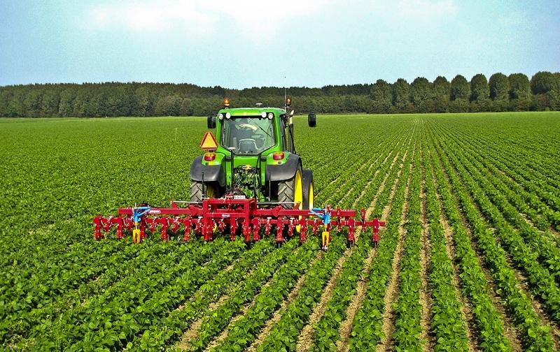 حدنصاب و تراز قبولی دعوت به مصاحبه آزمون دکتری توسعه کشاورزی