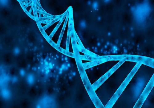 حداقل درصد دروس و آخرین رتبه قبولی رشته زیست شناسی سلولی و مولکولی دولتی روزانه کنکور تجربی