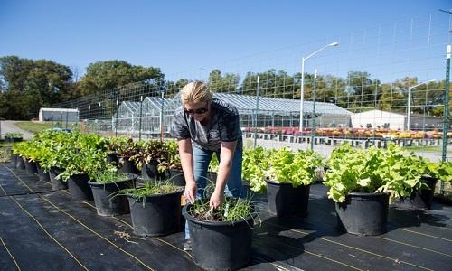 منابع کنکور کارشناسی ارشد علوم و مهندسی باغبانی
