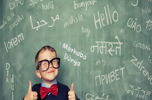 راهنمای انتخاب رشته مترجمی زبان عربی ظرفیت و دانشگاه های پذیرنده کنکور انسانی