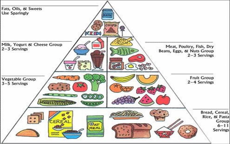 آخرین رتبه قبولی علوم تغذیه سهمیه ایثارگران 25 درصدی دانشگاه آزاد 96 - 97