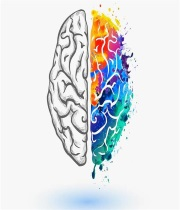 آخرین رتبه و تراز قبولی دکتری روانشناسی تربیتی 98 - 99