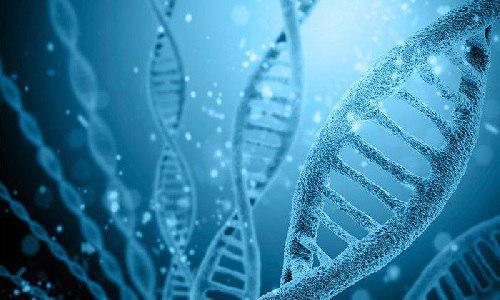 تراز قبولی زیست شناسی سلولی مولکولی - ژنتیک دانشگاه آزاد و ظرفیت مازاد خودگردان در سهمیه عادی