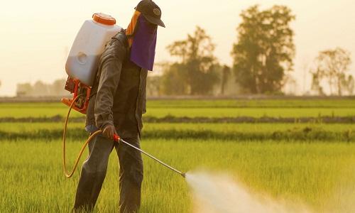منابع کنکور کارشناسی ارشد حشره شناسی کشاورزی