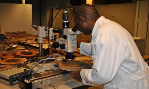 منابع آزمون دکتری مهندسی صنایع چوب و فرآورده های سلولزی بیولوژی و آناتومی