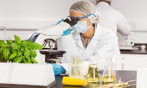 رتبه قبولی علوم و مهندسی صنایع غذایی دانشگاه آزاد و ظرفیت مازاد خودگردان در سهمیه عادی