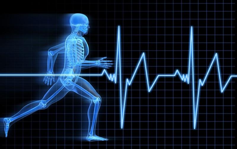 حدنصاب و تراز قبولی دعوت به مصاحبه آزمون دکتری تربیت بدنی فیزیولوژی ورزشی