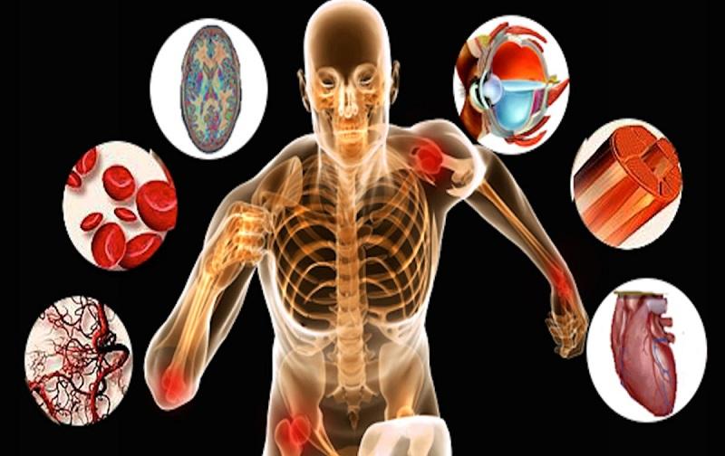 حدنصاب و تراز قبولی دعوت به مصاحبه آزمون دکتری تربیت بدنی رفتار حرکتی