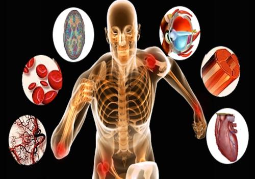 منابع آزمون دکتری تربیت بدنی رفتار حرکتی