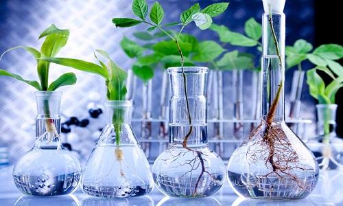 منابع کنکور کارشناسی ارشد بیوتکنولوژی کشاورزی