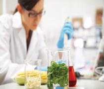 آخرین رتبه و تراز قبولی دکتری علوم و مهندسی صنایع غذایی دانشگاه آزاد 98 - 99