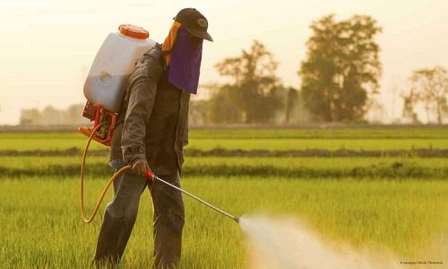 منابع آزمون دکتری حشره شناسی کشاورزی