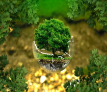 آخرین رتبه و تراز قبولی دکتری علوم و مهندسی محیط زیست 98 - 99