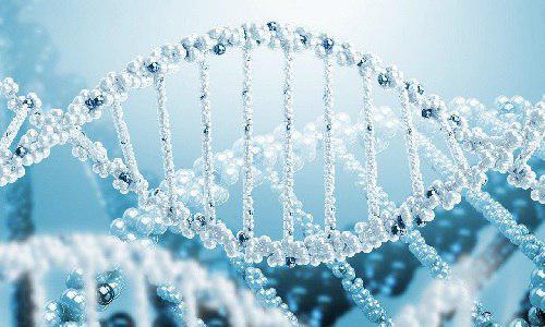رتبه قبولی زیست شناسی سلولی مولکولی - ژنتیک دانشگاه آزاد و ظرفیت مازاد خودگردان در سهمیه عادی